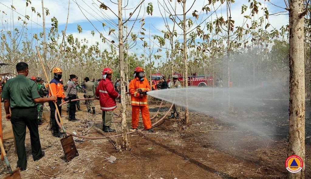 Apel Siaga Kebakaran Hutan dan Lahan