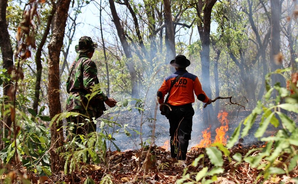 Kebakaran Hutan Lahan di Desa Curahsawo Kecamatan Gending
